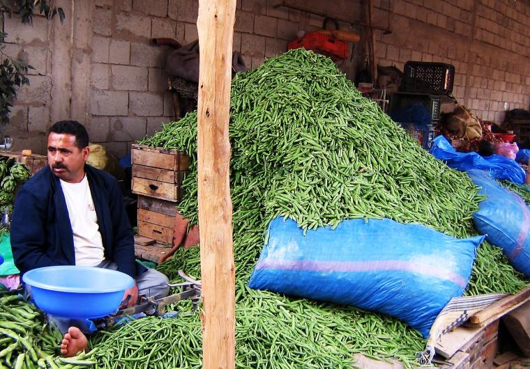 2007-11-19 maroc -agadir  11-2008