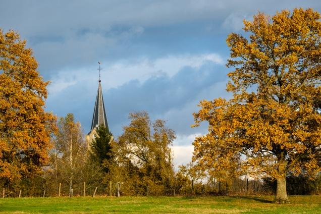 automne-1