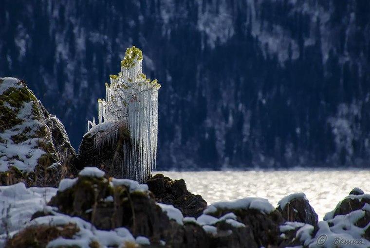 frozen-ice-art-4__880.jpg
