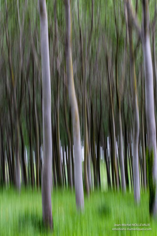 zooming-5.jpg