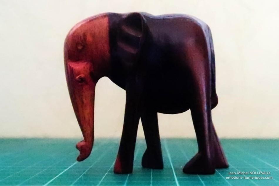elephant-12800-iso-1.jpg