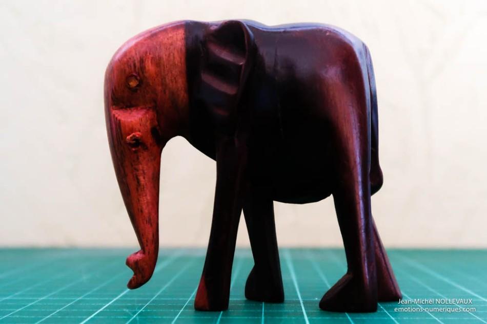 elephant-400-iso-1.jpg