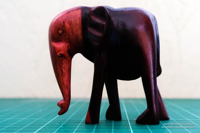 elephant-800-iso-1.jpg
