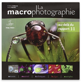 macrophotographie.png