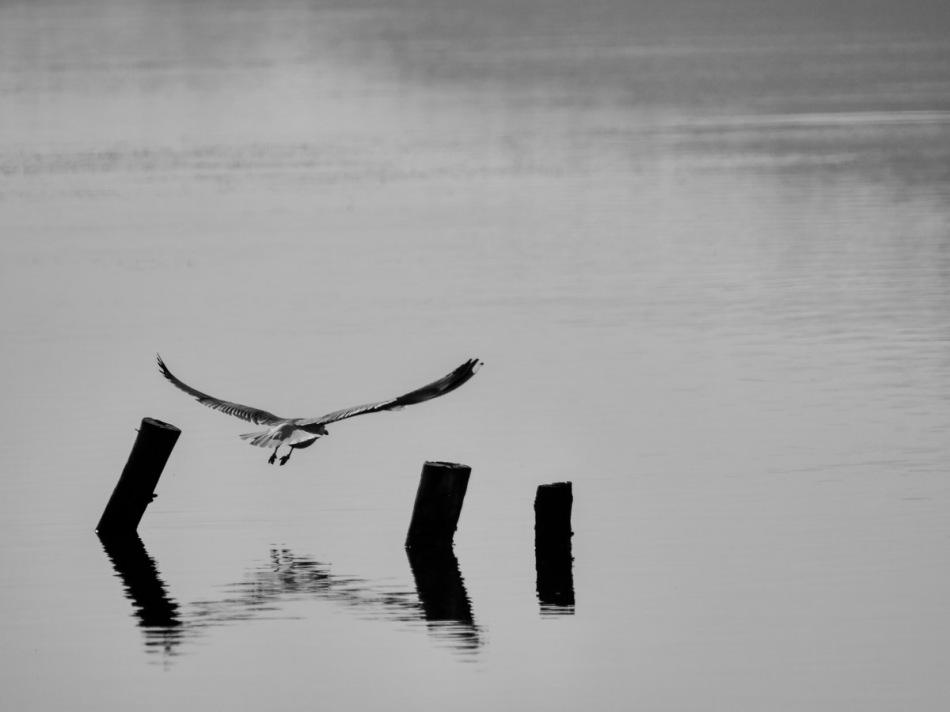 minimalisme-7.jpg