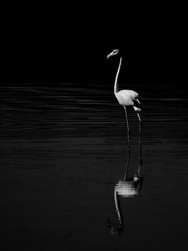 minimalisme-8.jpg