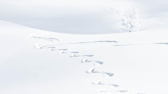 neige-surex.jpg
